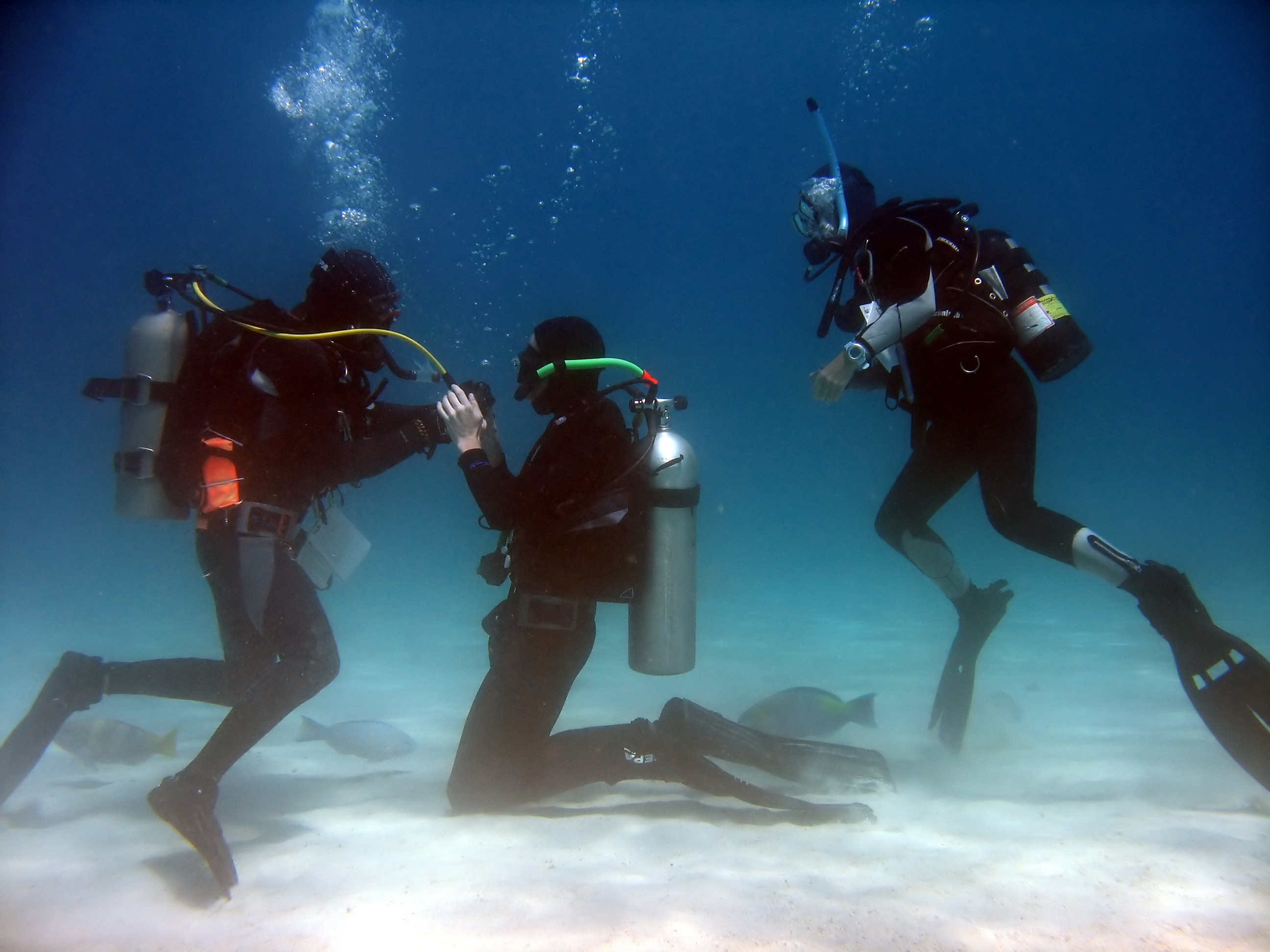 Working as a scuba diving instructor in Australia