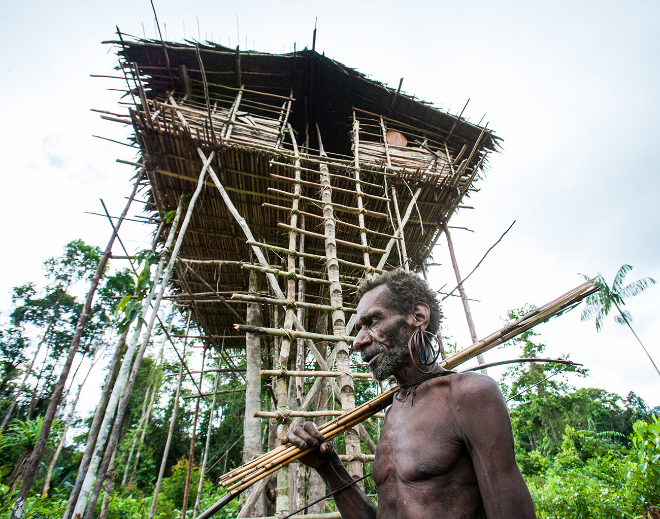 Korowai man, a traditional tree house