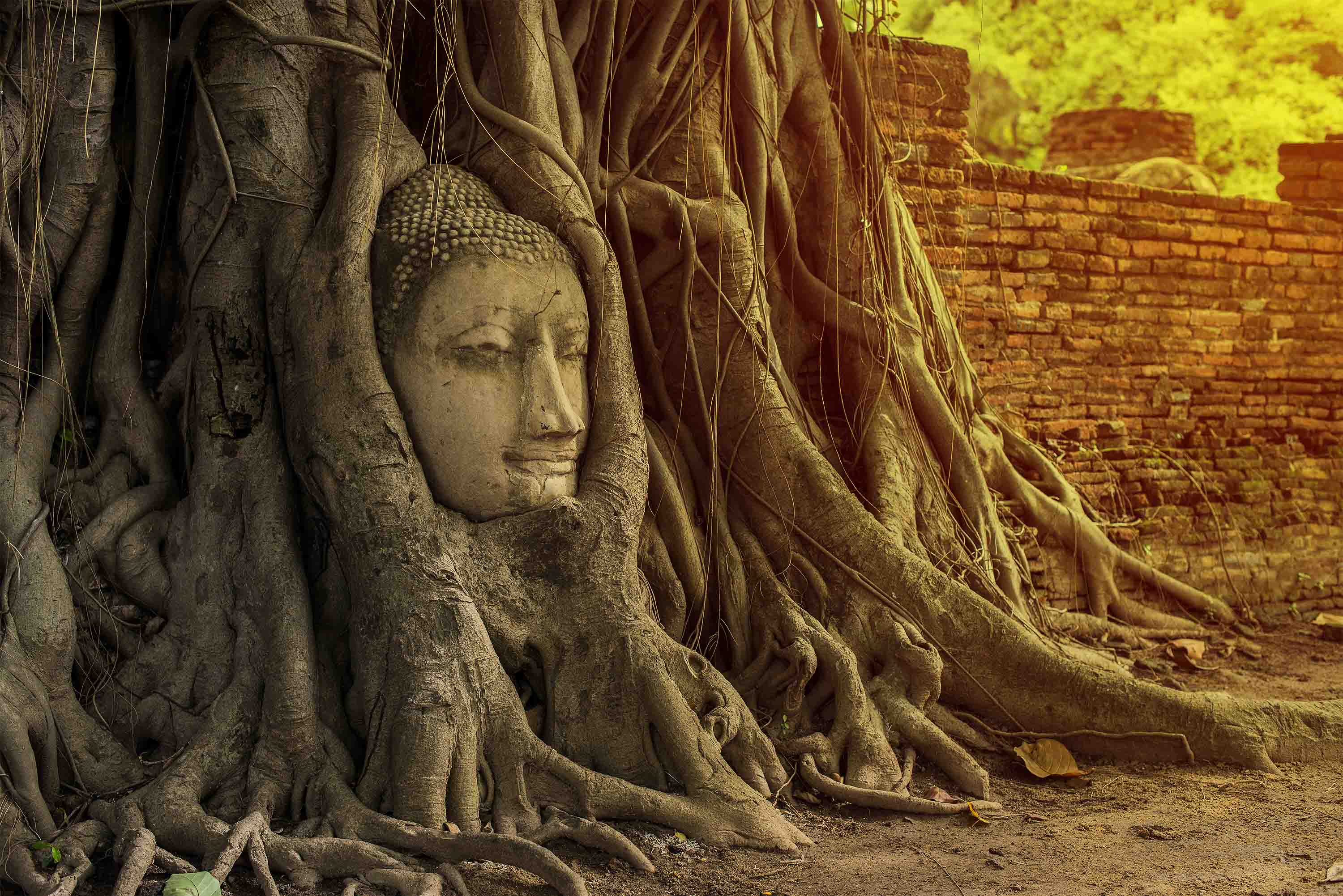 DISCOVER AYUTTHAYA – A SHOWPIECE OF SIAM