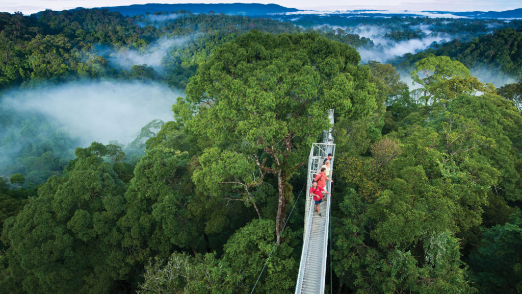 TOP 15 NATURAL ATTRACTIONS IN BRUNEI
