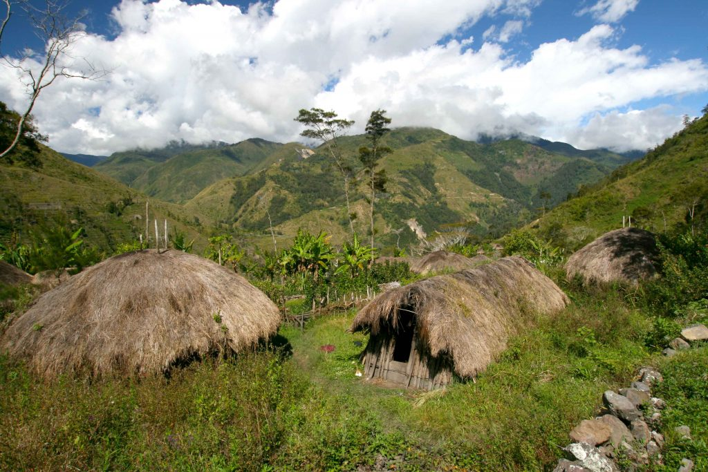Baliem Valley village